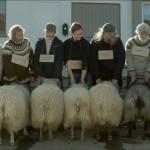 Rams -Despre oameni si oi